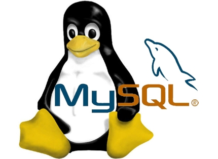 A quick guide to install MySQL server on Ubuntu Linux